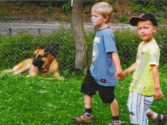 Wider gefährliche Tierliebe